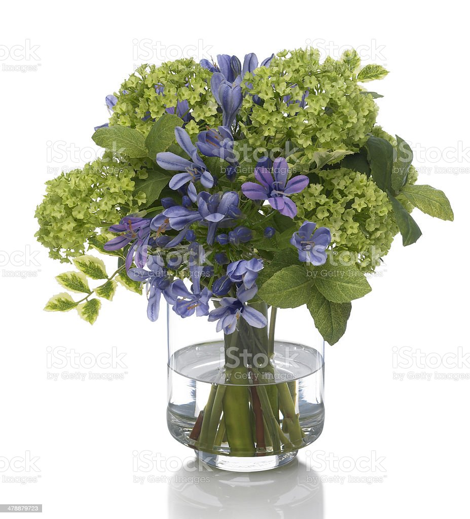 Snowball and Agapanthus bouquet on white background royalty-free stock photo