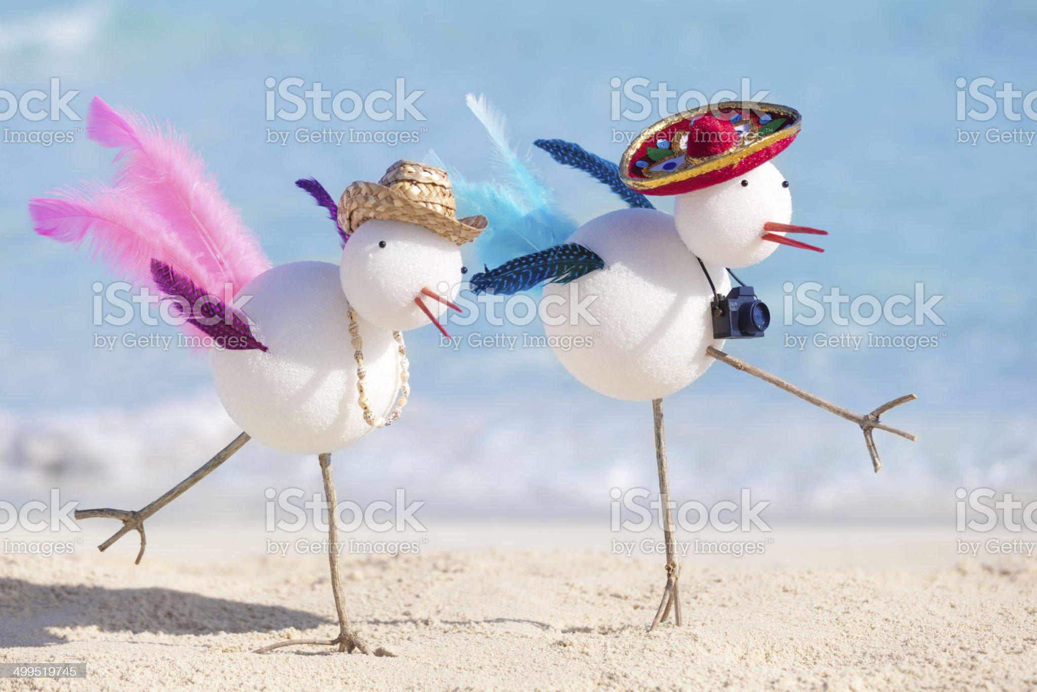 Snowbird Couple Enjoying Tropical Beach in Winter Vacation royalty-free stock photo