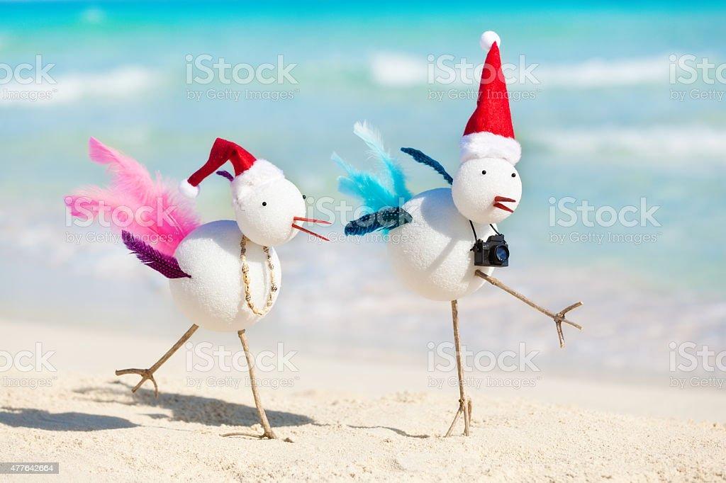 Snowbirds Christmas Winter Tropical Beach Vacation stock photo