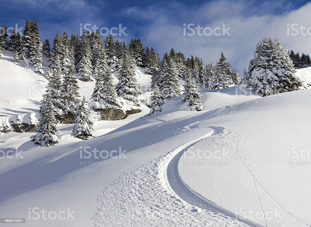 Snowboard track stock photo