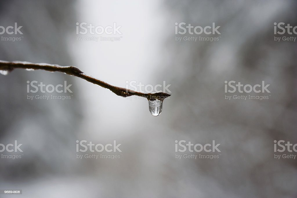 snowbreak royalty-free stock photo