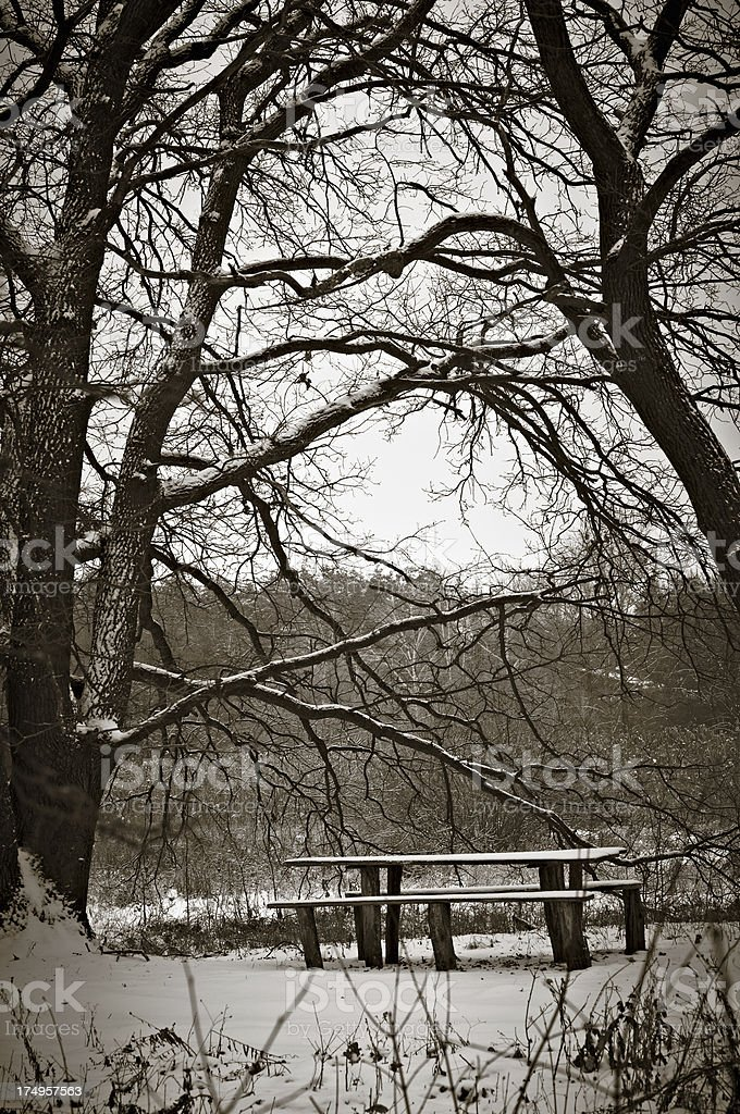 Snow-covered bench royalty-free stock photo