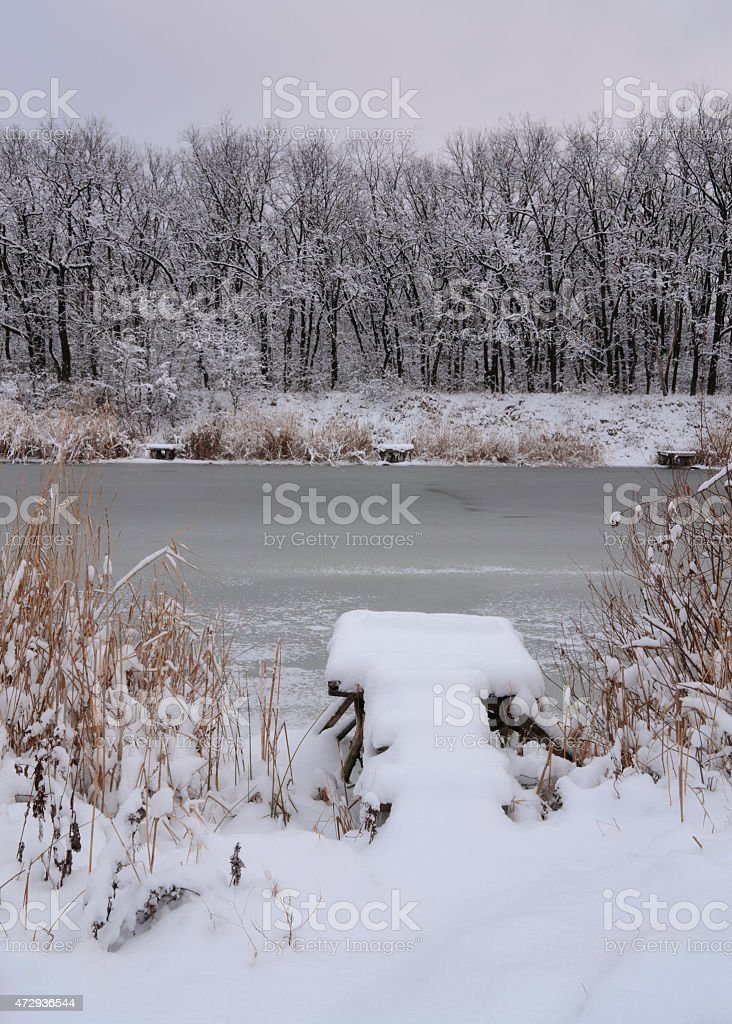 snow-covered bridge foto de stock libre de derechos