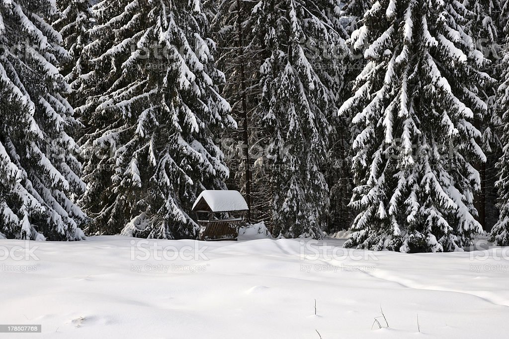 Snow-covered feeder for forest animals royalty-free stock photo