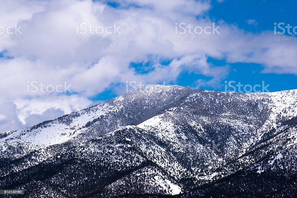 Snow-covered mountain in the clouds with black trees stock photo
