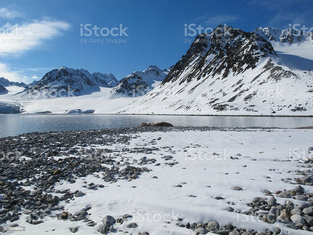 Snow-covered mountains and beach stock photo