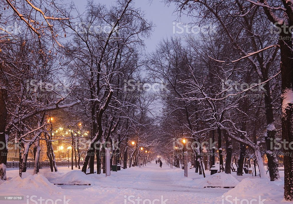 Snow-covered path during the winter in Moscow, Russia royalty-free stock photo