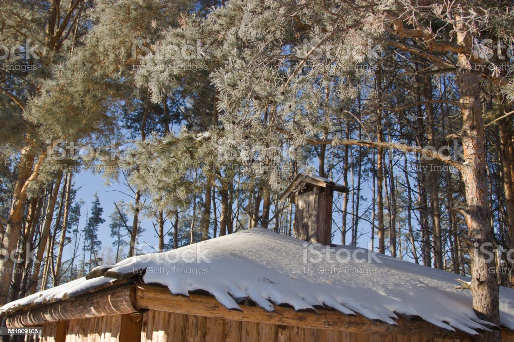 Snow-covered roof. Trees in hoarfrost. stock photo