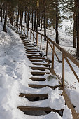 Snow-covered wooden staircase in pine forest.