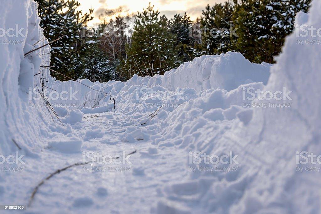 snowdrifts snow forest tracks winter stock photo