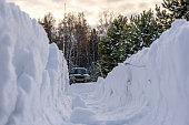 snowdrifts snow forest tracks winter