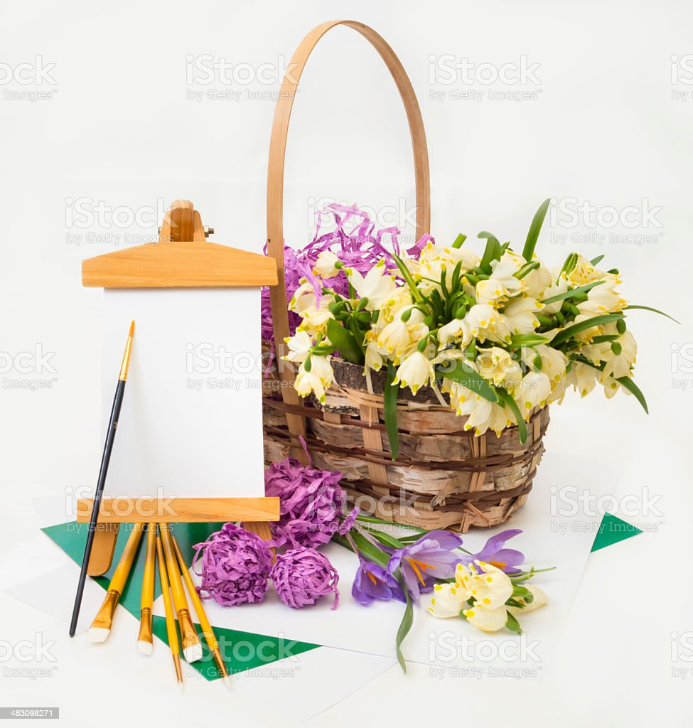 Snowdrops and crocus in basket. stock photo