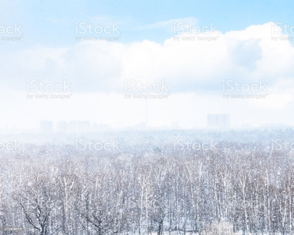 snowfall and blurred city and woods stock photo