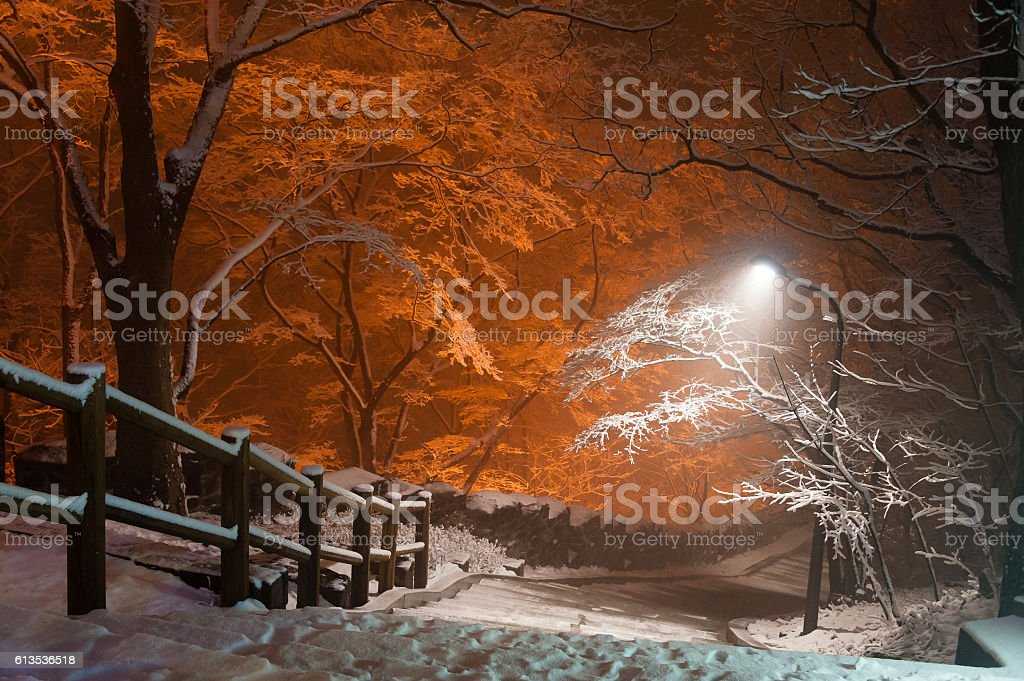snowfall at park of Namsan tower of Seoul Korea stock photo