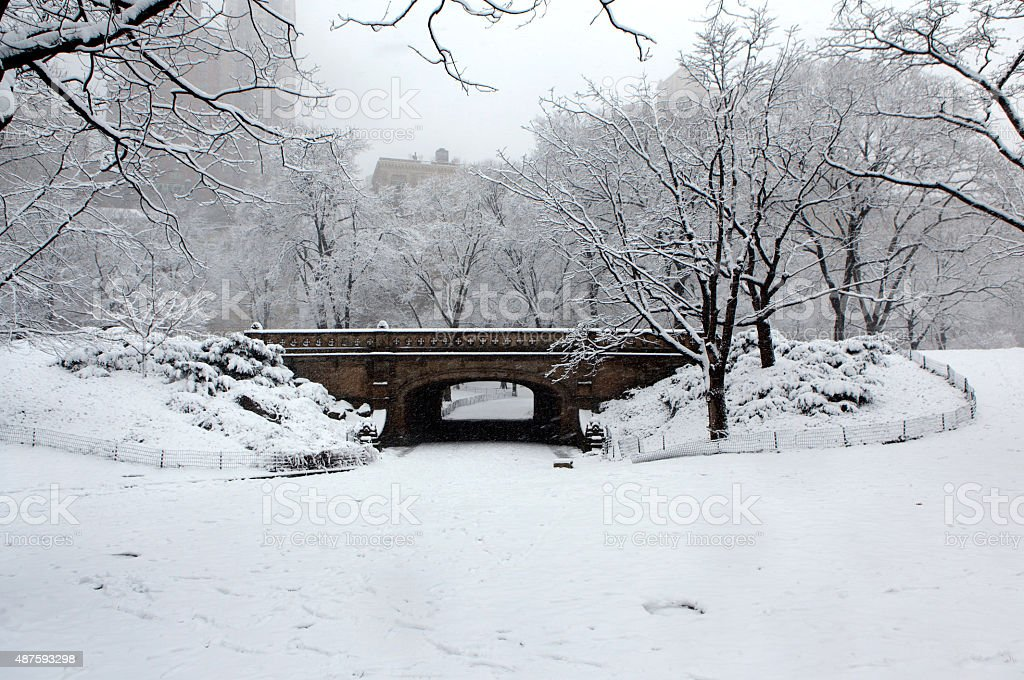 Snowfall in Central Park stock photo