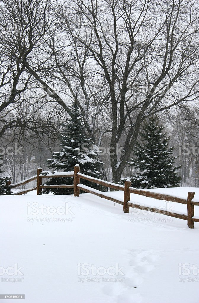 Snowfall on a Fence royalty-free stock photo