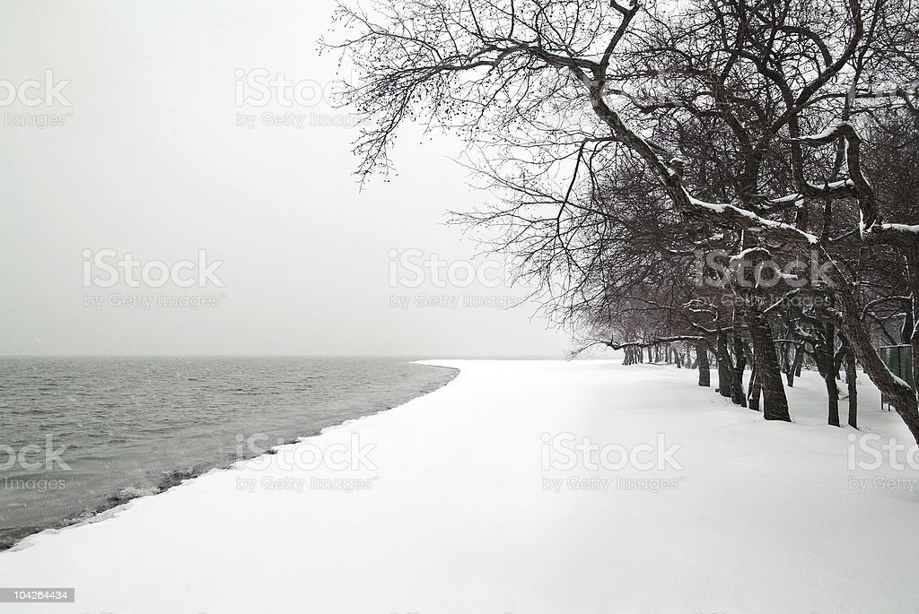 snowfall on the sea beach stock photo