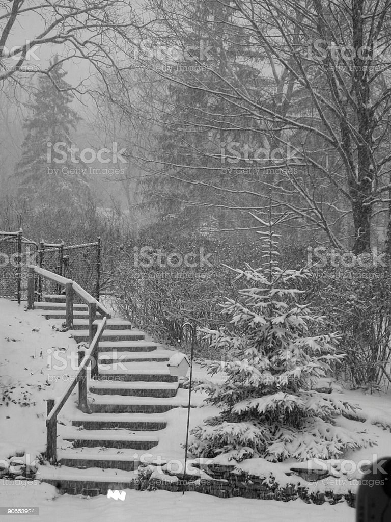 Snowfall on the Steps and Trees royalty-free stock photo