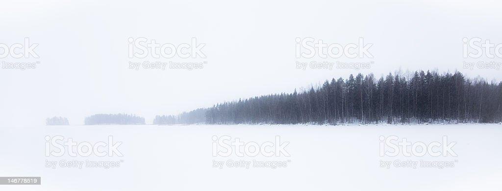 Snowfall royalty-free stock photo
