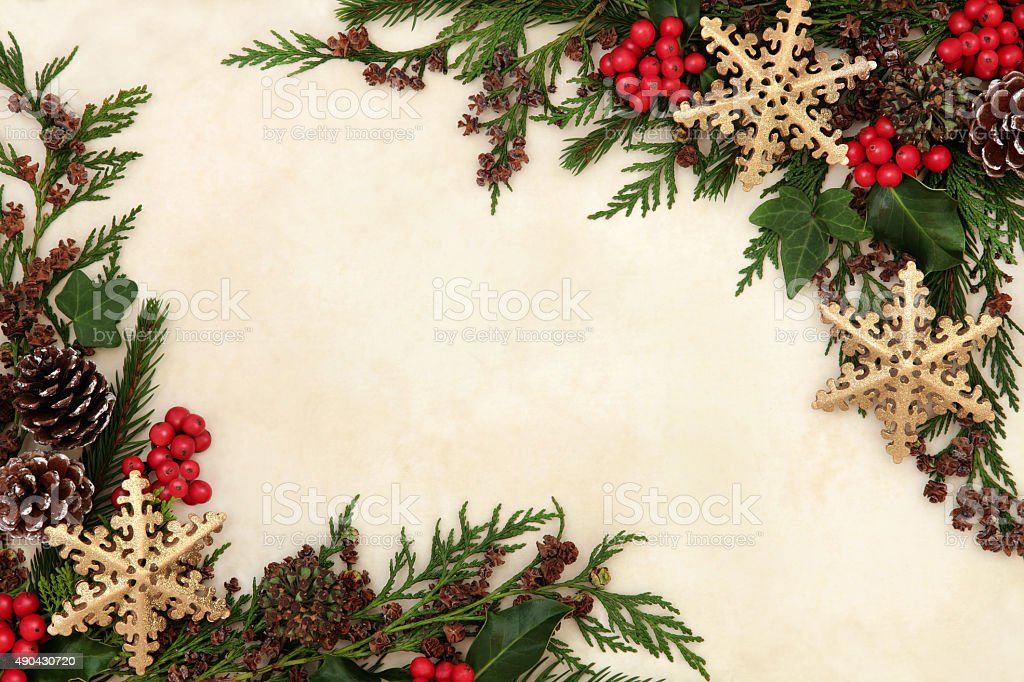 Snowflake and Floral Border stock photo