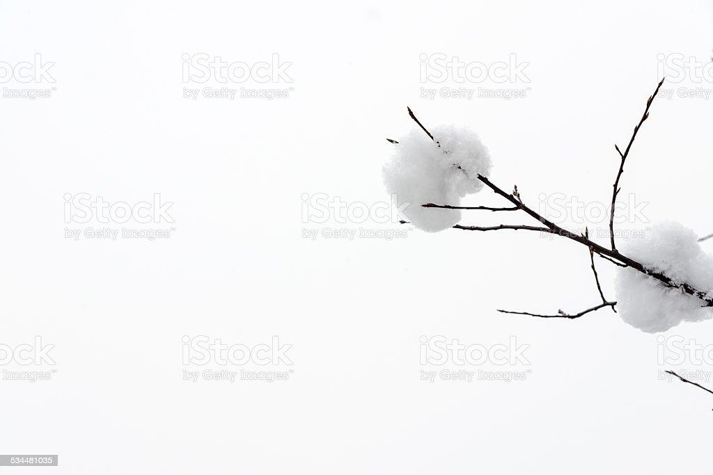 Płatek śniegu w zimie zbiór zdjęć royalty-free