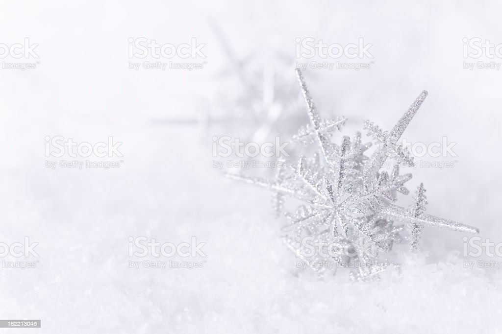 Snowflakes in the Snow stock photo