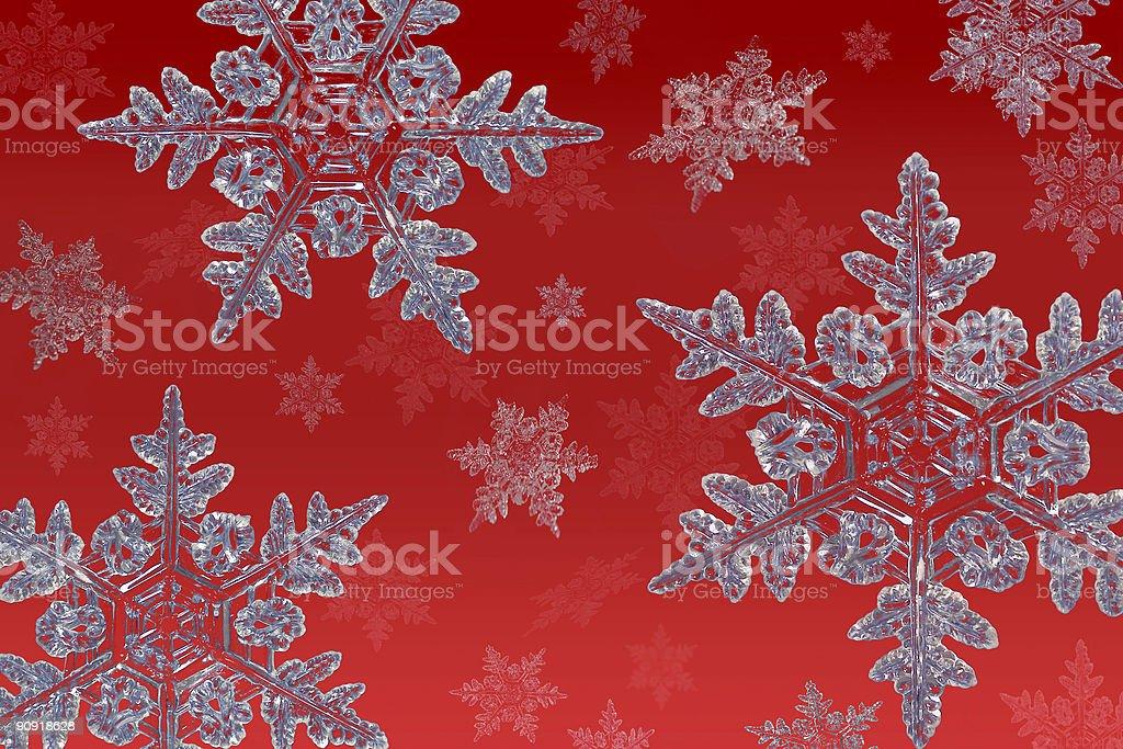 snowflakes on red stock photo