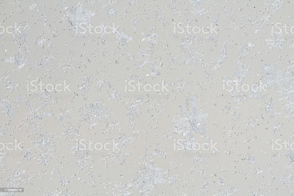 snowflakes on the glass. royalty-free stock photo