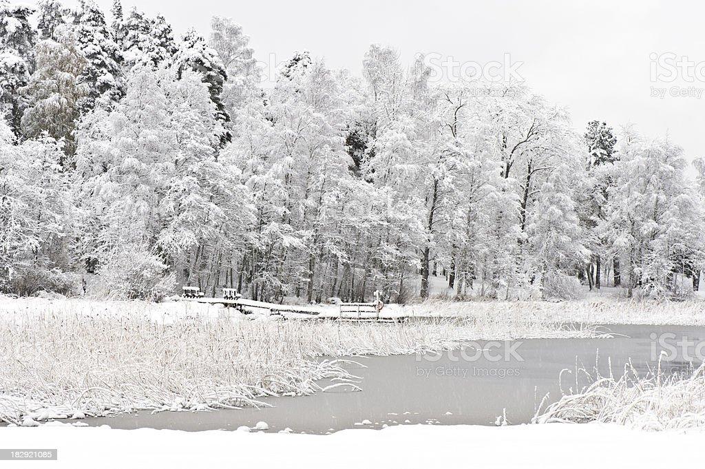 Snowing at the lake shore royalty-free stock photo