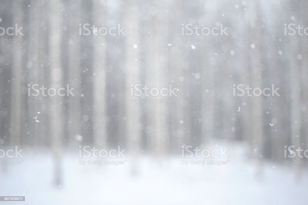 Snowing background stock photo