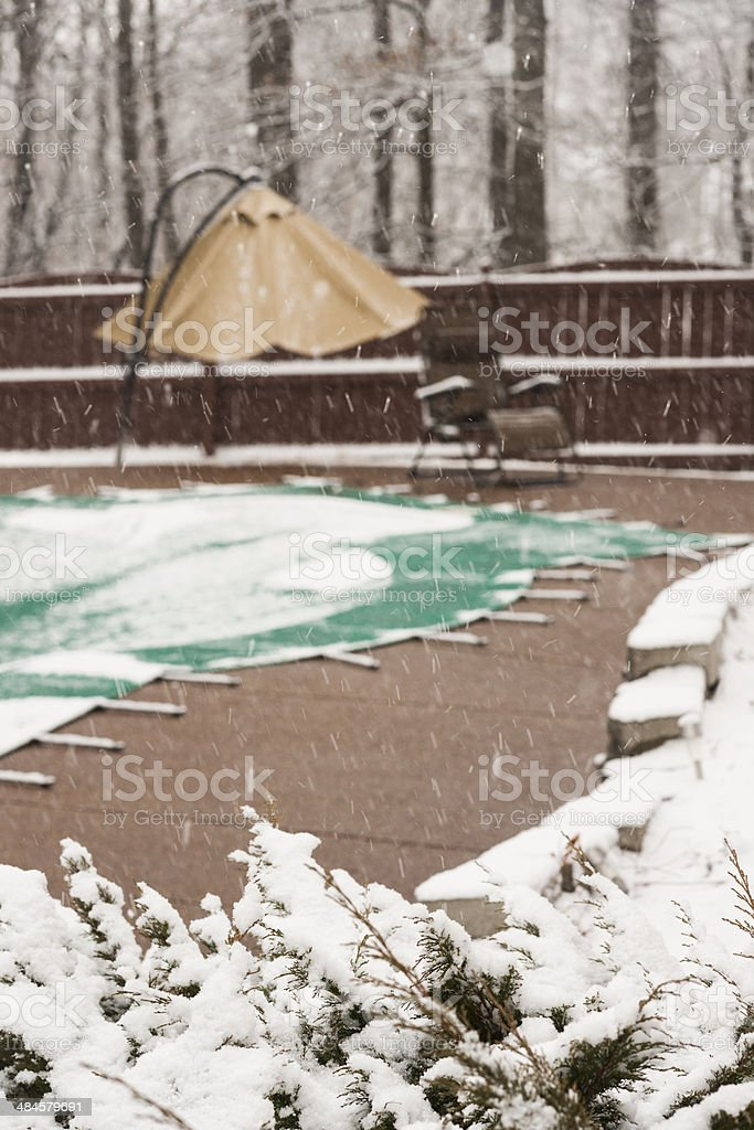 Snowing during spring stock photo