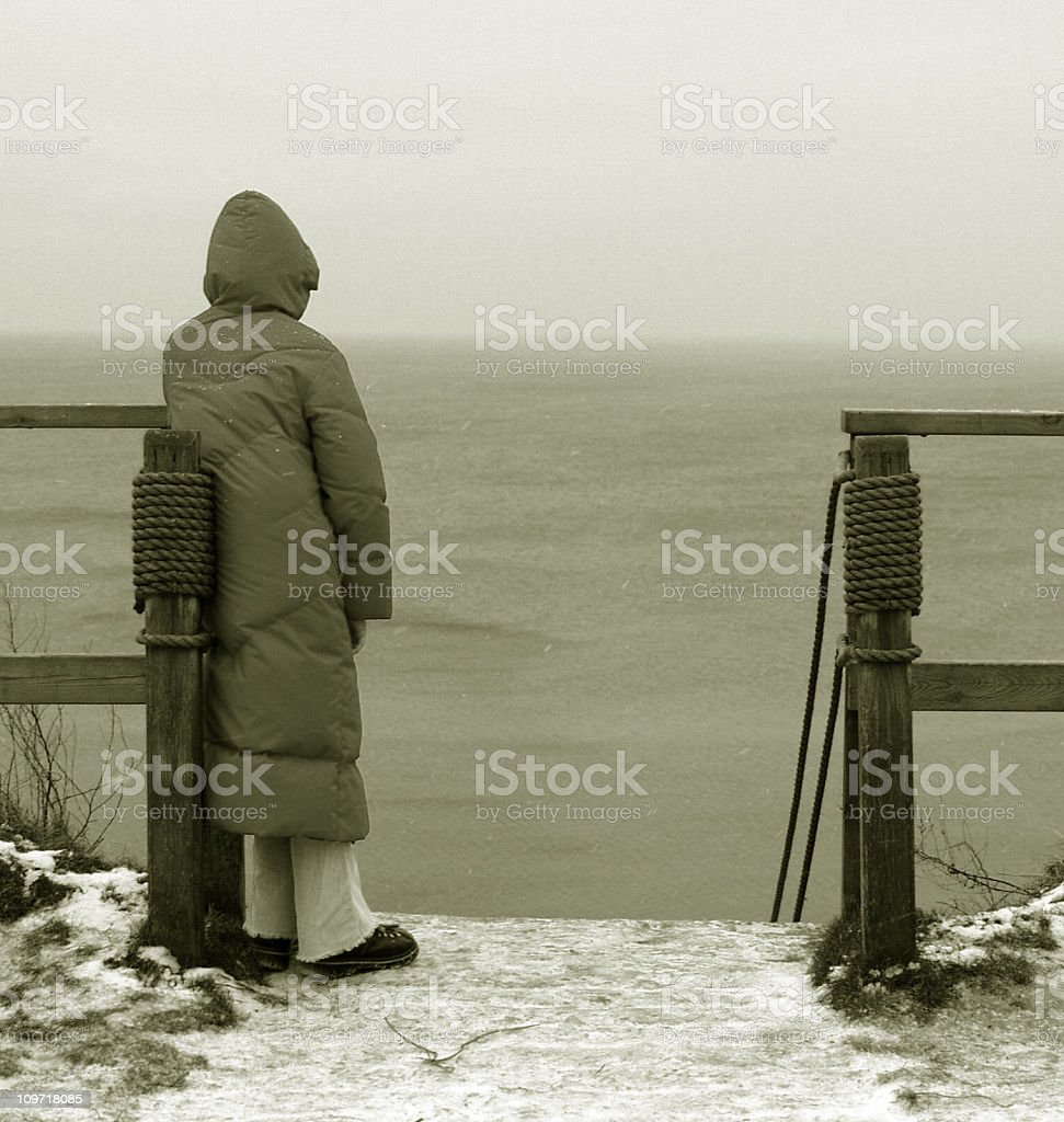 Snowing in Denmark royalty-free stock photo
