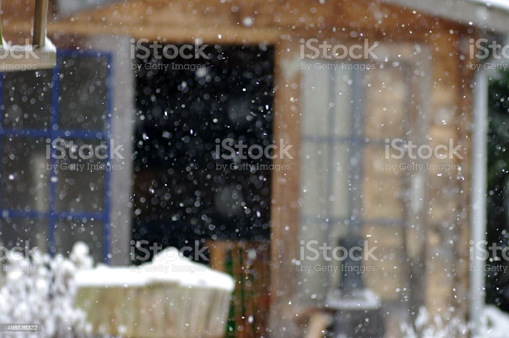 Snowing in the garden stock photo