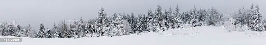 Snowly panorama view stock photo