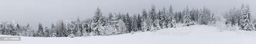 Snowly panorama view stock photo