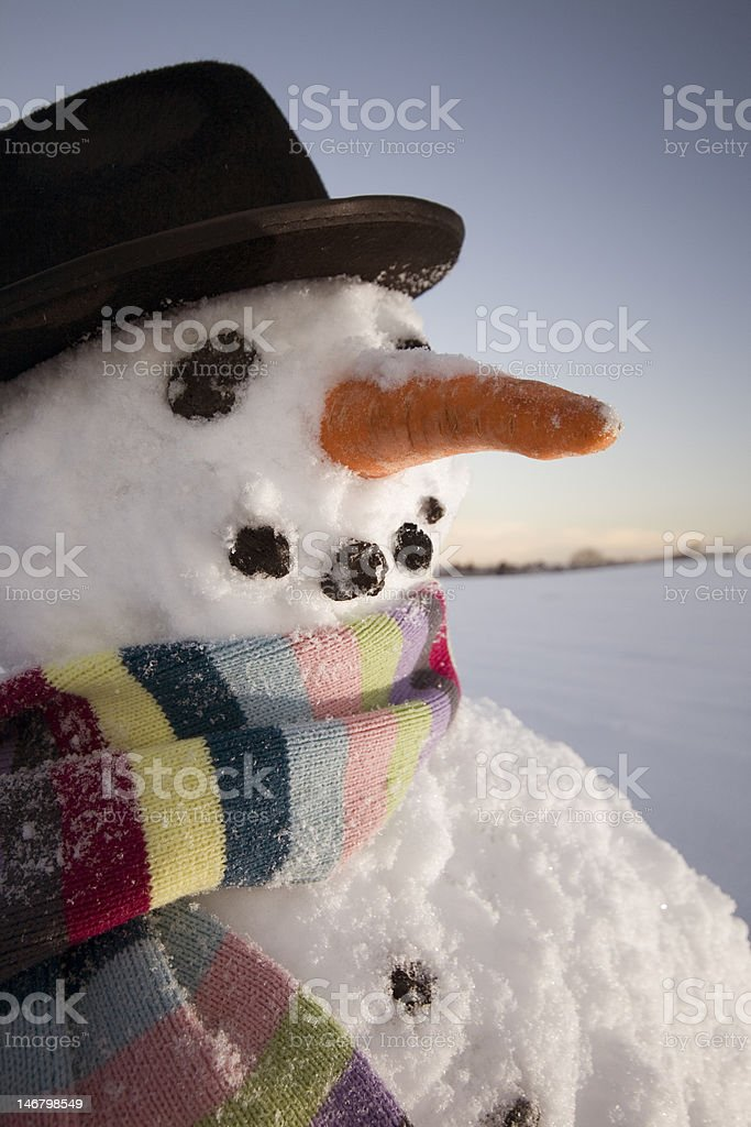 Snowman field hat scarf royalty-free stock photo