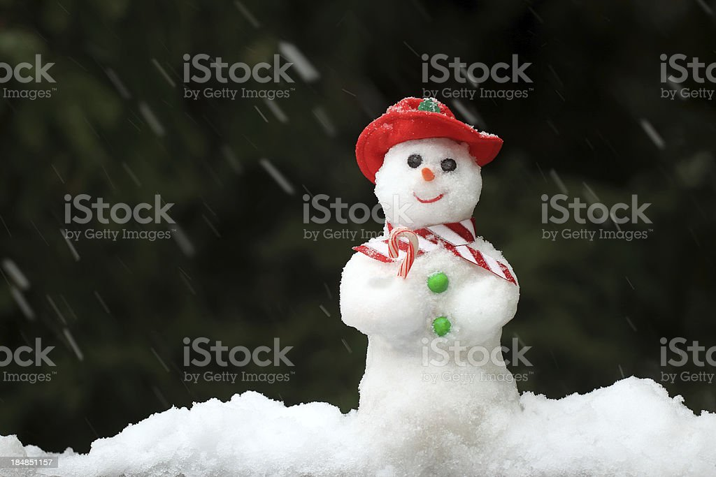 Snowman in a Snow Storm royalty-free stock photo