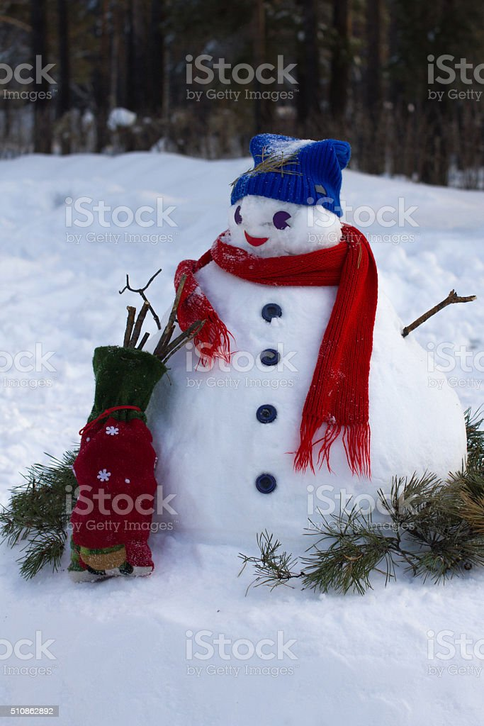 snowman in blue hat and red wool scarf stock photo