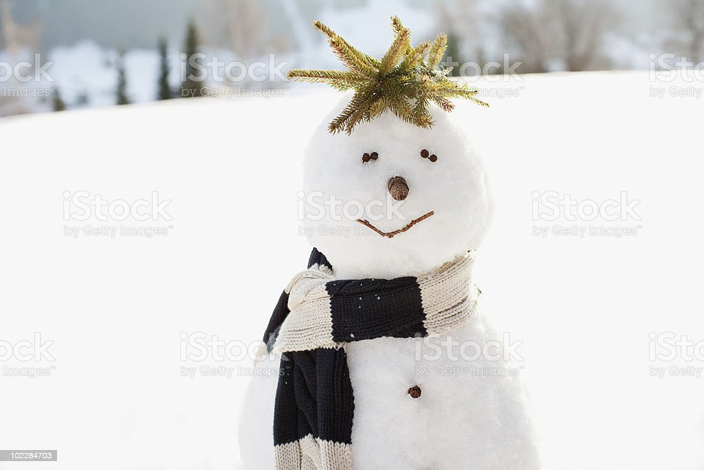 Snowman in field royalty-free stock photo