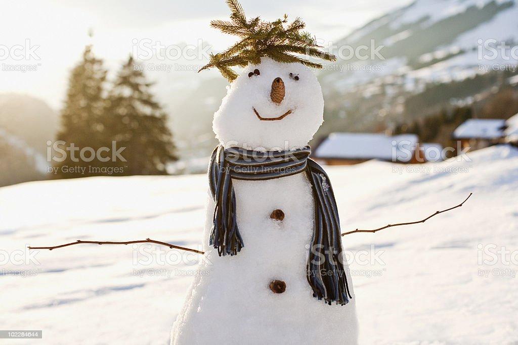 Snowman in snowy field stock photo