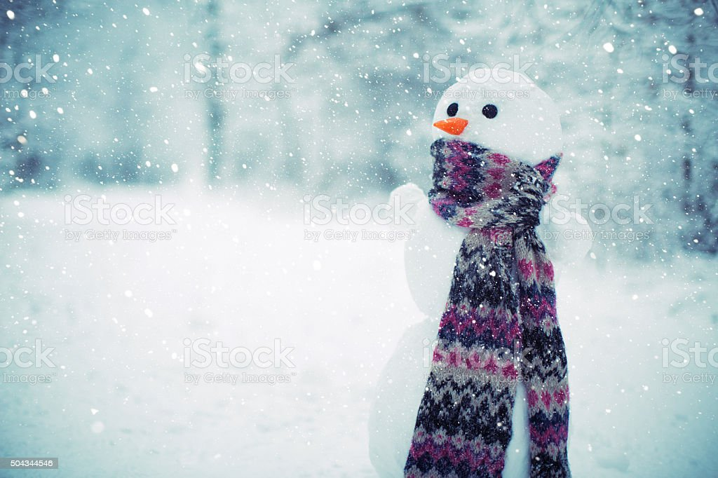 Snowman in the woods stock photo