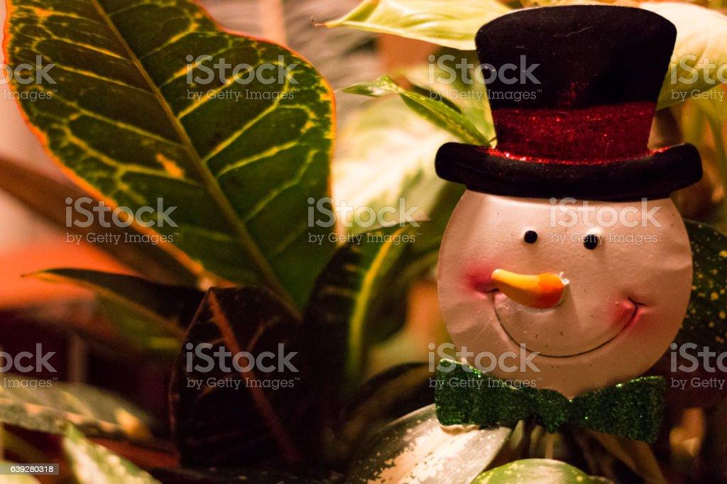 Snowman Plant Decoration stock photo