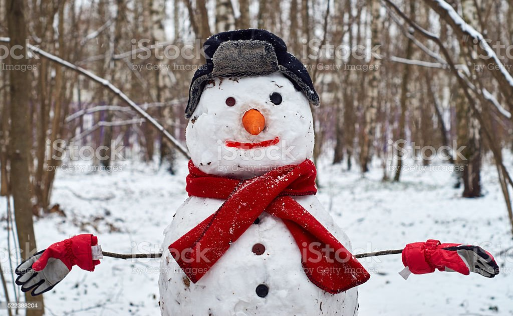 Snowman wearing hat with ear flaps and skarf stock photo