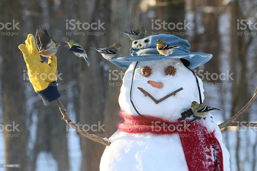 Snowman with Birds stock photo