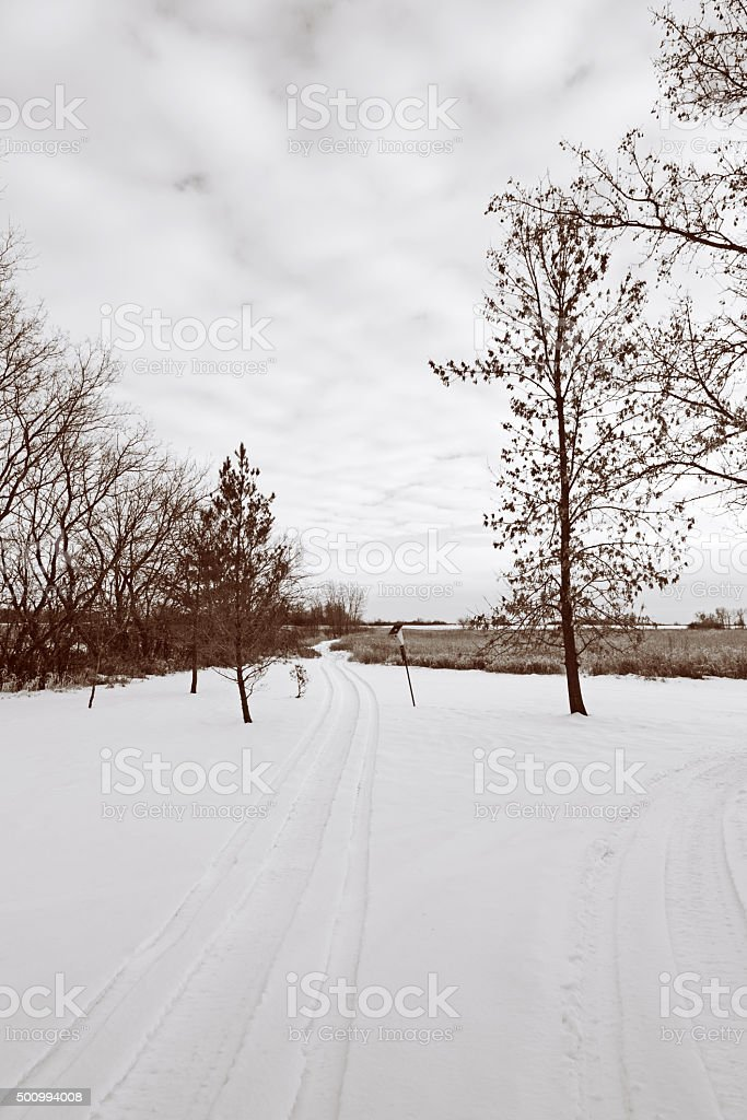 Snowmobile Trail in a Rural Winter Landscape stock photo