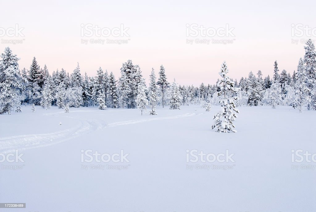 Snowmobile trail in Finnish Lapland royalty-free stock photo