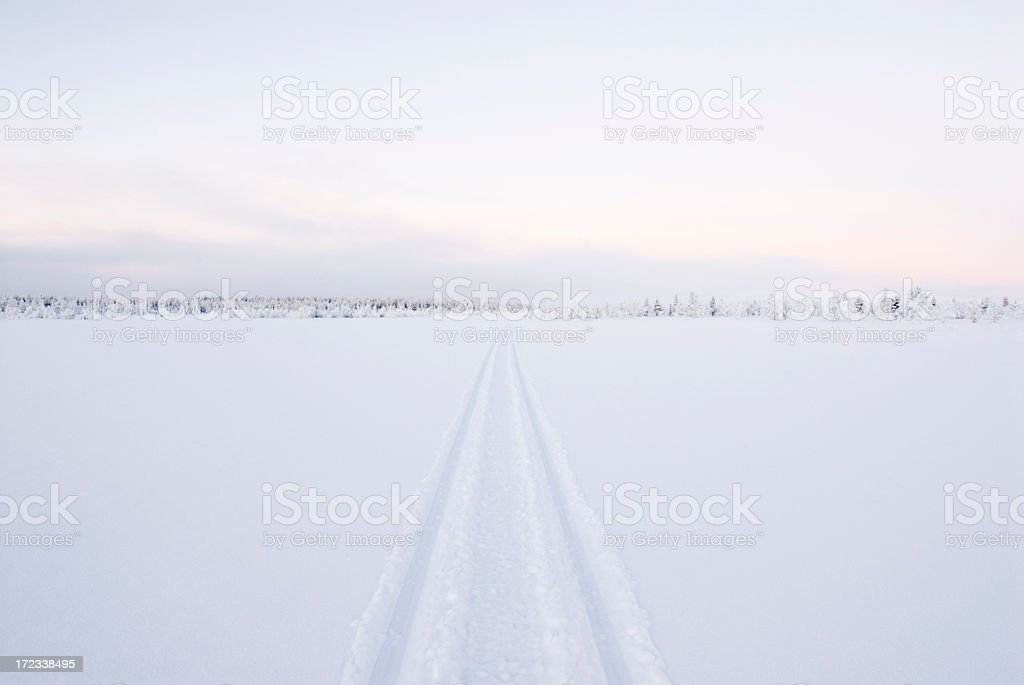 Snowmobile trail in Lapland royalty-free stock photo