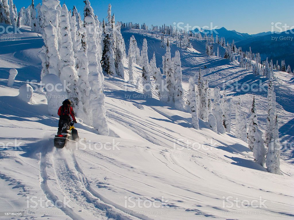 snowmobile trip royalty-free stock photo