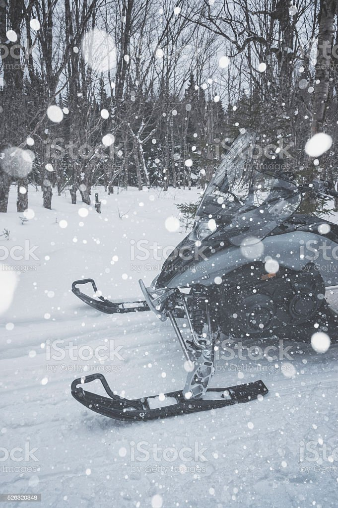 Snowmobiling in the Forest stock photo