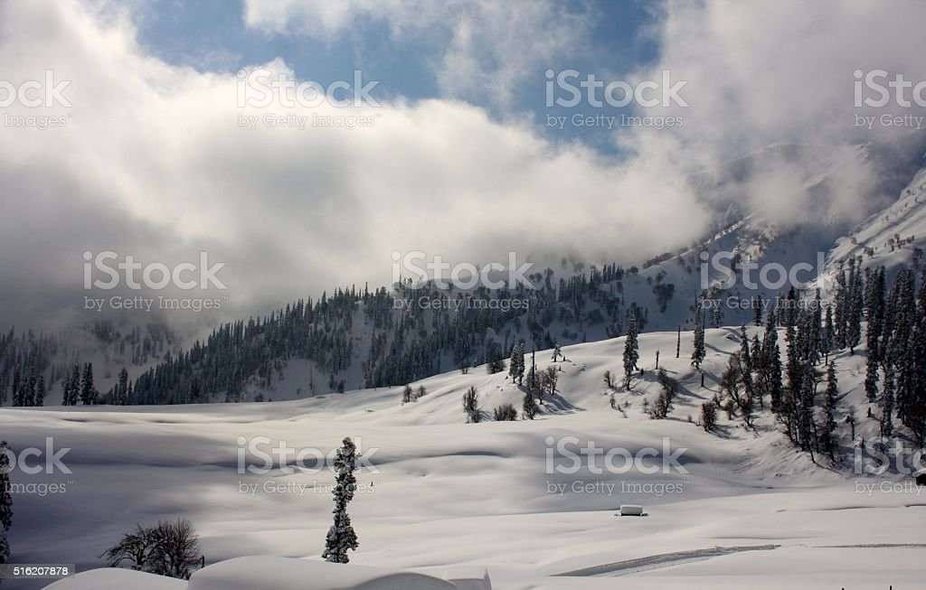 Snow-scape with Mountains and Trees in Kashmir stock photo